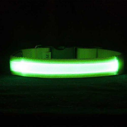 Ошейник-зеленый,лента-1011,1021-в-темноте