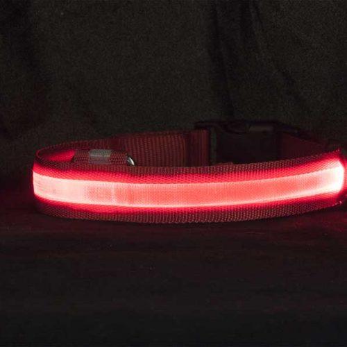 Ошейник-красный,лента-1012,1022,1032-в-темноте