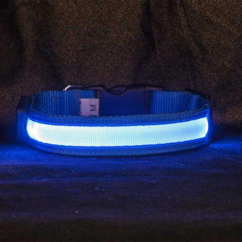 Ошейник-синий,лента-1013,1023,1033-в-темноте