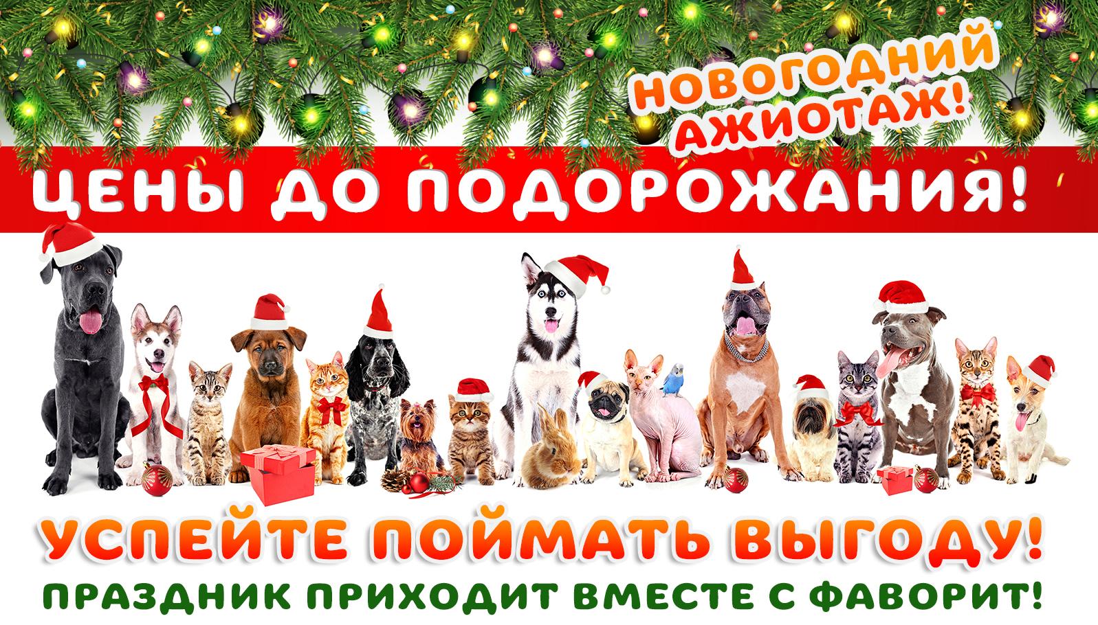 новогодний-баннер22